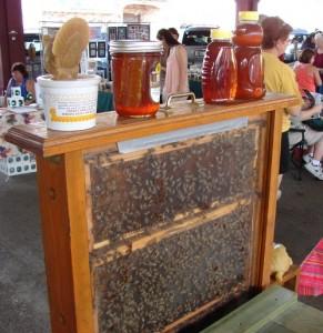 Gretna Farmers Market in Gretna, LA